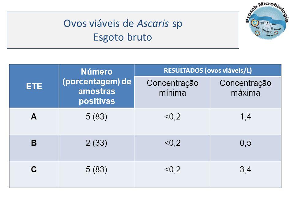 Ovos viáveis de Ascaris sp Esgoto bruto ETE Número (porcentagem) de amostras positivas RESULTADOS (ovos viáveis/L) Concentração mínima Concentração má