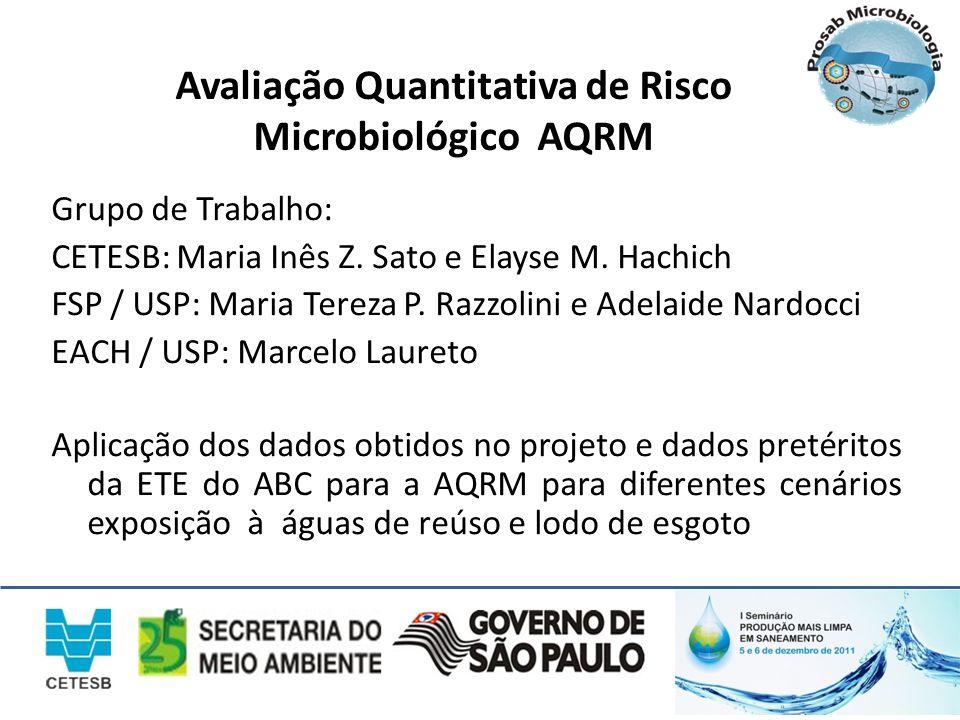 Avaliação Quantitativa de Risco Microbiológico AQRM Grupo de Trabalho: CETESB: Maria Inês Z. Sato e Elayse M. Hachich FSP / USP: Maria Tereza P. Razzo