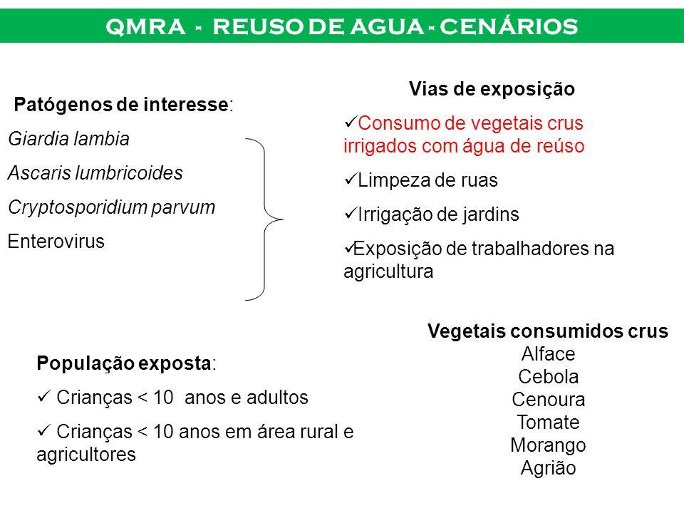 QMRA - REUSO DE AGUA - CENÁRIOS Vias de exposição Consumo de vegetais crus irrigados com água de reúso Limpeza de ruas Irrigação de jardins Exposição