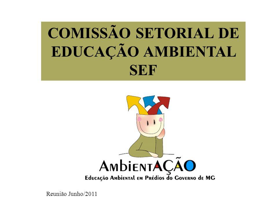 COMISSÃO SETORIAL DE EDUCAÇÃO AMBIENTAL SEF Reunião Junho/2011