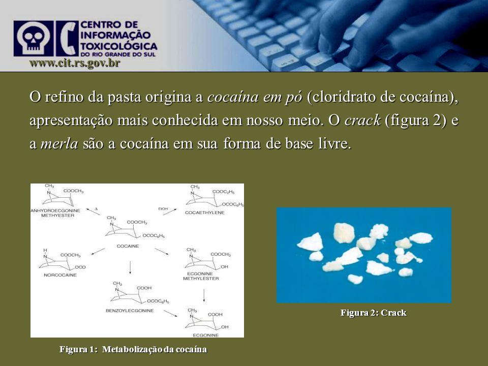 www.cit.rs.gov.br O refino da pasta origina a cocaína em pó (cloridrato de cocaína), apresentação mais conhecida em nosso meio. O crack (figura 2) e a