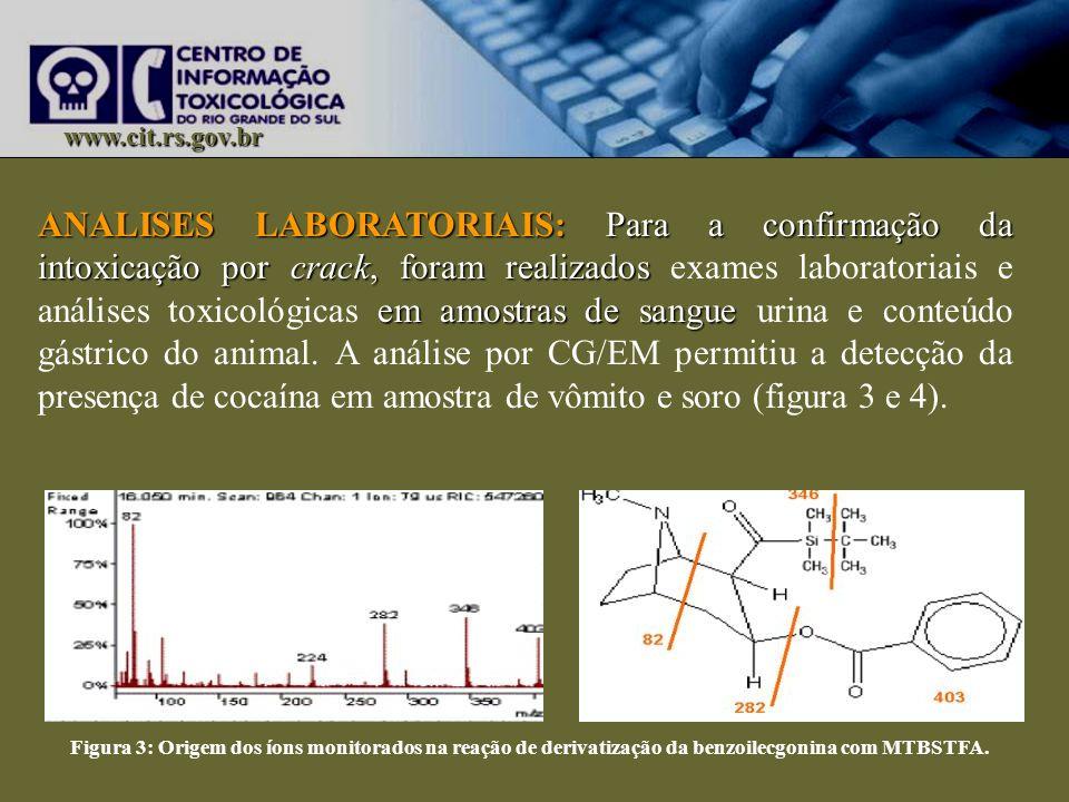 www.cit.rs.gov.br ANALISES LABORATORIAIS: Para a confirmação da intoxicação por crack, foram realizados em amostras de sangue ANALISES LABORATORIAIS: