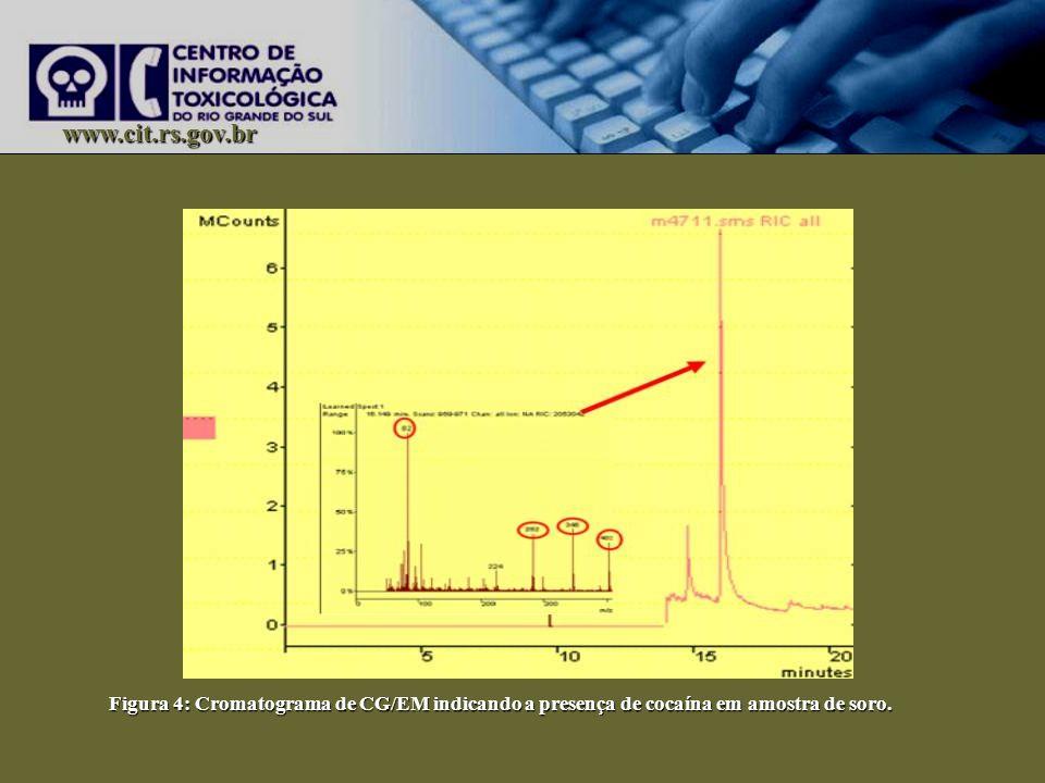 www.cit.rs.gov.br Figura 4: Cromatograma de CG/EM indicando a presença de cocaína em amostra de soro.