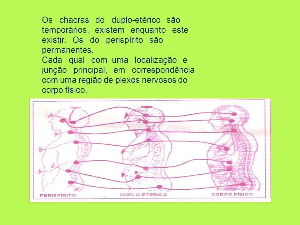 Os chacras do duplo-etérico são temporários, existem enquanto este existir. Os do perispírito são permanentes. Cada qual com uma localização e junção