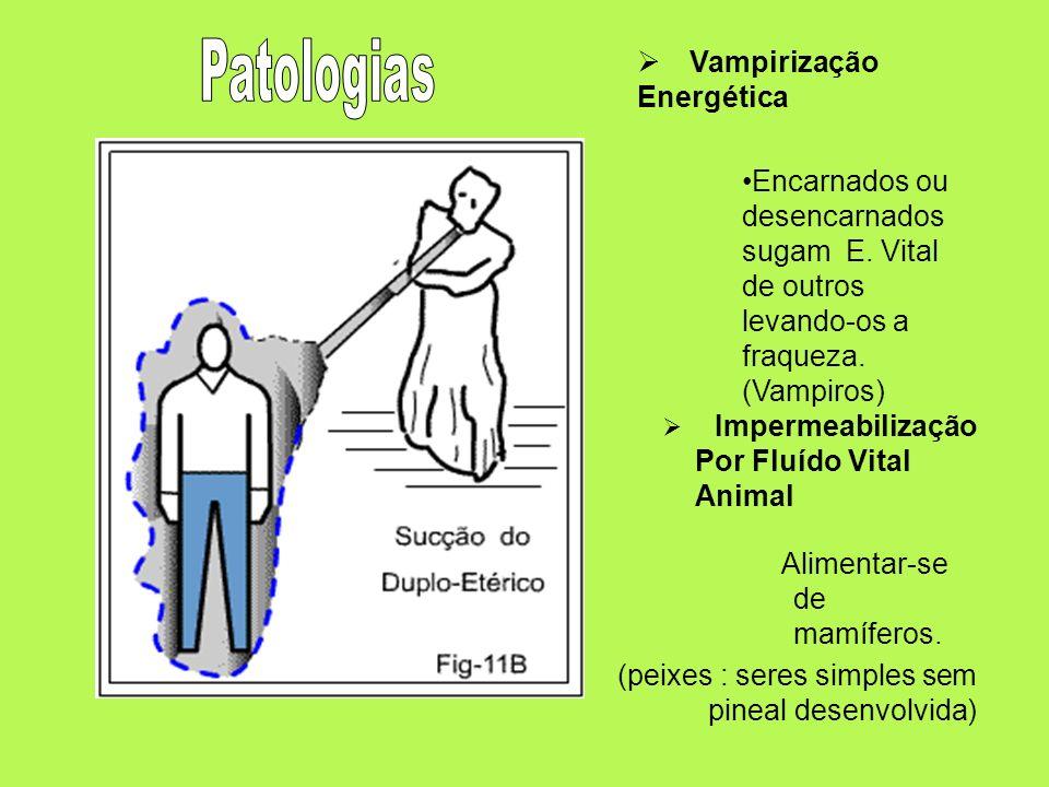 Impermeabilização Por Fluído Vital Animal Alimentar-se de mamíferos. (peixes : seres simples sem pineal desenvolvida) Vampirização Energética Encarnad