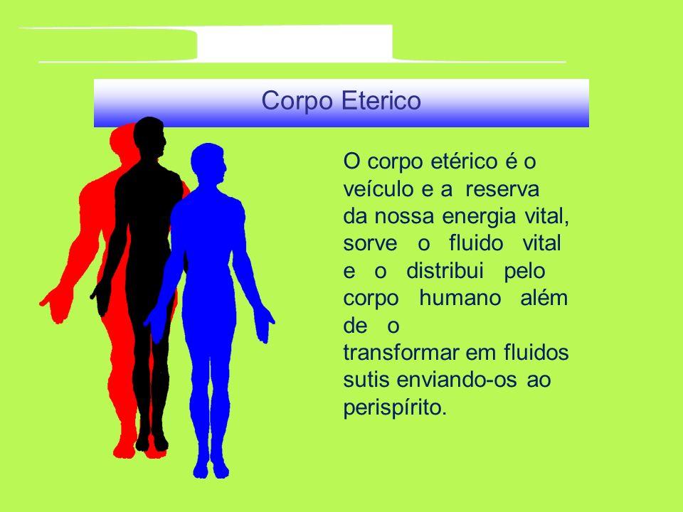 Corpo Eterico O corpo etérico é o veículo e a reserva da nossa energia vital, sorve o fluido vital e o distribui pelo corpo humano além de o transform