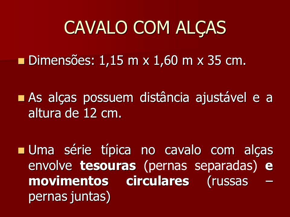 CAVALO COM ALÇAS Dimensões: 1,15 m x 1,60 m x 35 cm. Dimensões: 1,15 m x 1,60 m x 35 cm. As alças possuem distância ajustável e a altura de 12 cm. As