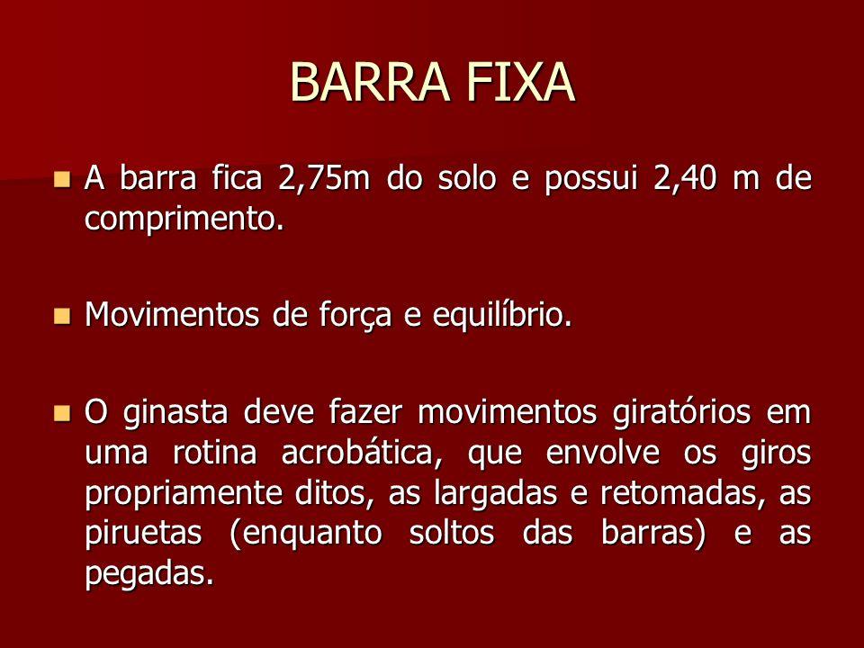 BARRA FIXA A barra fica 2,75m do solo e possui 2,40 m de comprimento. A barra fica 2,75m do solo e possui 2,40 m de comprimento. Movimentos de força e