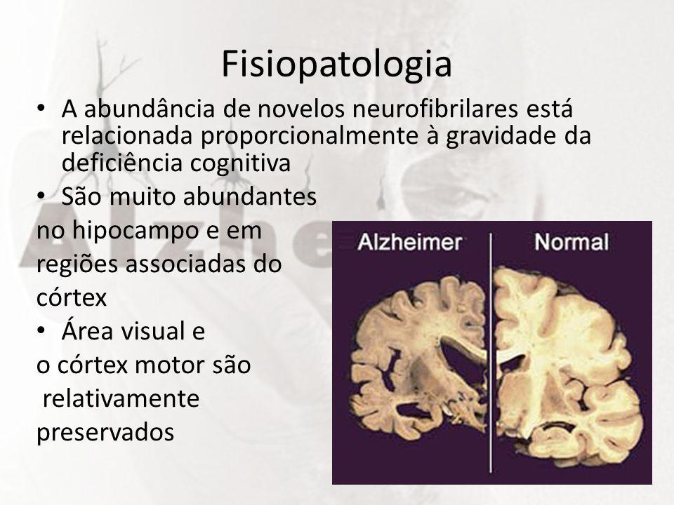Fisiopatologia A abundância de novelos neurofibrilares está relacionada proporcionalmente à gravidade da deficiência cognitiva São muito abundantes no