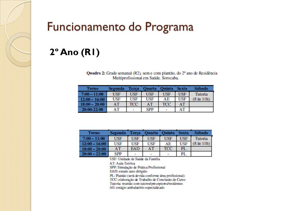 Funcionamento do Programa 2º Ano (R1)