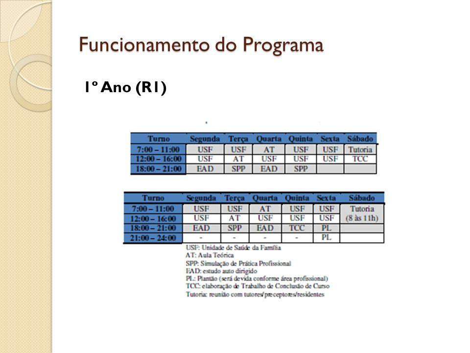 Funcionamento do Programa 1º Ano (R1)
