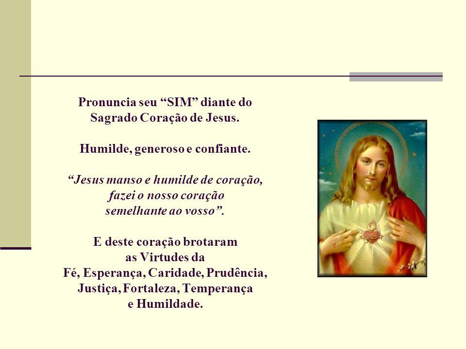 Pronuncia seu SIM diante do Sagrado Coração de Jesus. Humilde, generoso e confiante. Jesus manso e humilde de coração, fazei o nosso coração semelhant