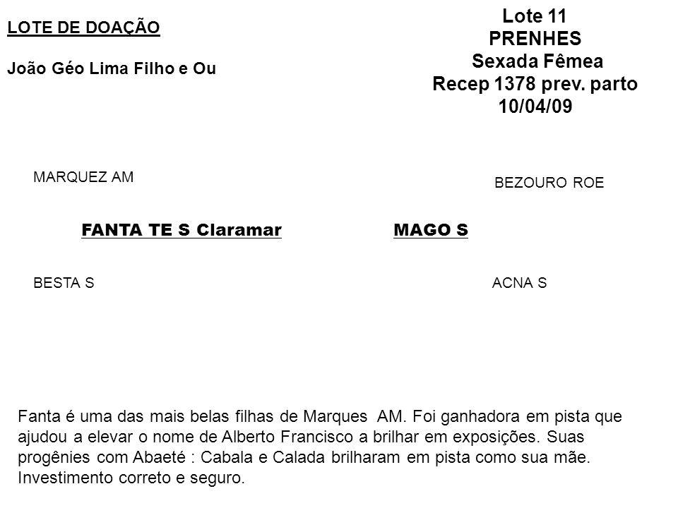 LOTE DE DOAÇÃO João Géo Lima Filho e Ou Lote 11 PRENHES Sexada Fêmea Recep 1378 prev. parto 10/04/09 FANTA TE S Claramar MARQUEZ AM BESTA S MAGO S BEZ