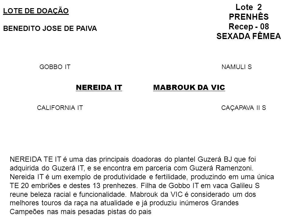 Lote 2 PRENHÊS Recep - 08 SEXADA FÊMEA LOTE DE DOAÇÃO BENEDITO JOSE DE PAIVA GOBBO IT CALIFORNIA IT MABROUK DA VIC NAMULI S CAÇAPAVA II S NEREIDA IT NEREIDA TE IT é uma das principais doadoras do plantel Guzerá BJ que foi adquirida do Guzerá IT, e se encontra em parceria com Guzerá Ramenzoni.