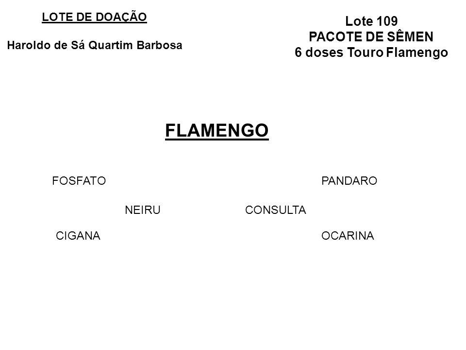 Lote 109 PACOTE DE SÊMEN 6 doses Touro Flamengo FLAMENGO LOTE DE DOAÇÃO Haroldo de Sá Quartim Barbosa NEIRU FOSFATO CIGANA CONSULTA PANDARO OCARINA