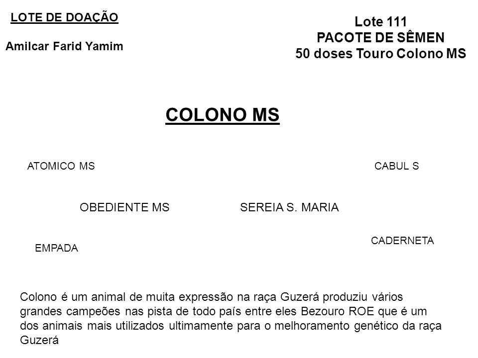 Lote 111 PACOTE DE SÊMEN 50 doses Touro Colono MS COLONO MS LOTE DE DOAÇÃO Amilcar Farid Yamim OBEDIENTE MSSEREIA S. MARIA ATOMICO MS EMPADA CABUL S C