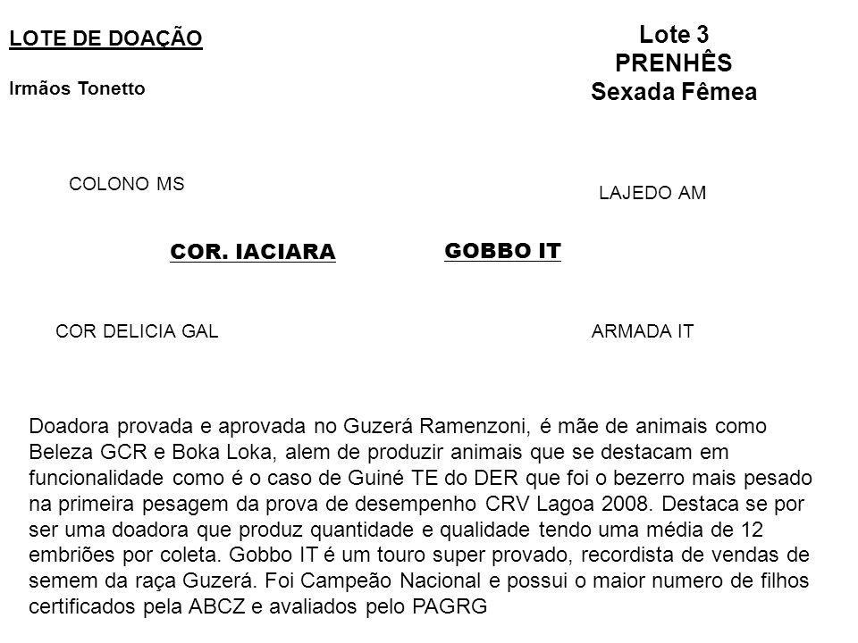 Lote 3 PRENHÊS Sexada Fêmea LOTE DE DOAÇÃO Irmãos Tonetto GOBBO ITCOR.