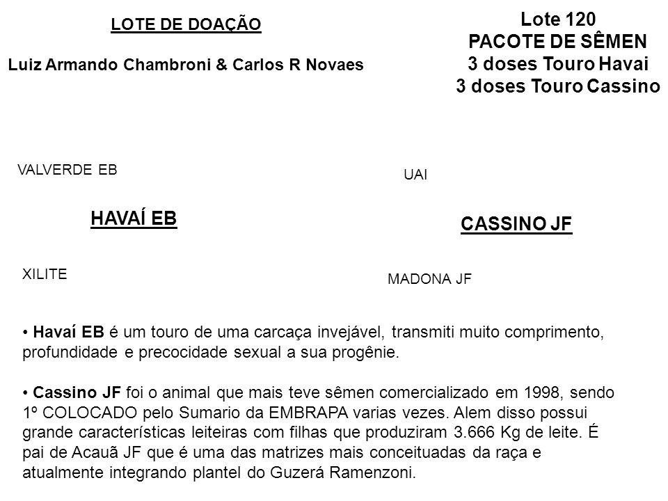 Lote 120 PACOTE DE SÊMEN 3 doses Touro Havai 3 doses Touro Cassino HAVAÍ EB LOTE DE DOAÇÃO Luiz Armando Chambroni & Carlos R Novaes XILITE VALVERDE EB