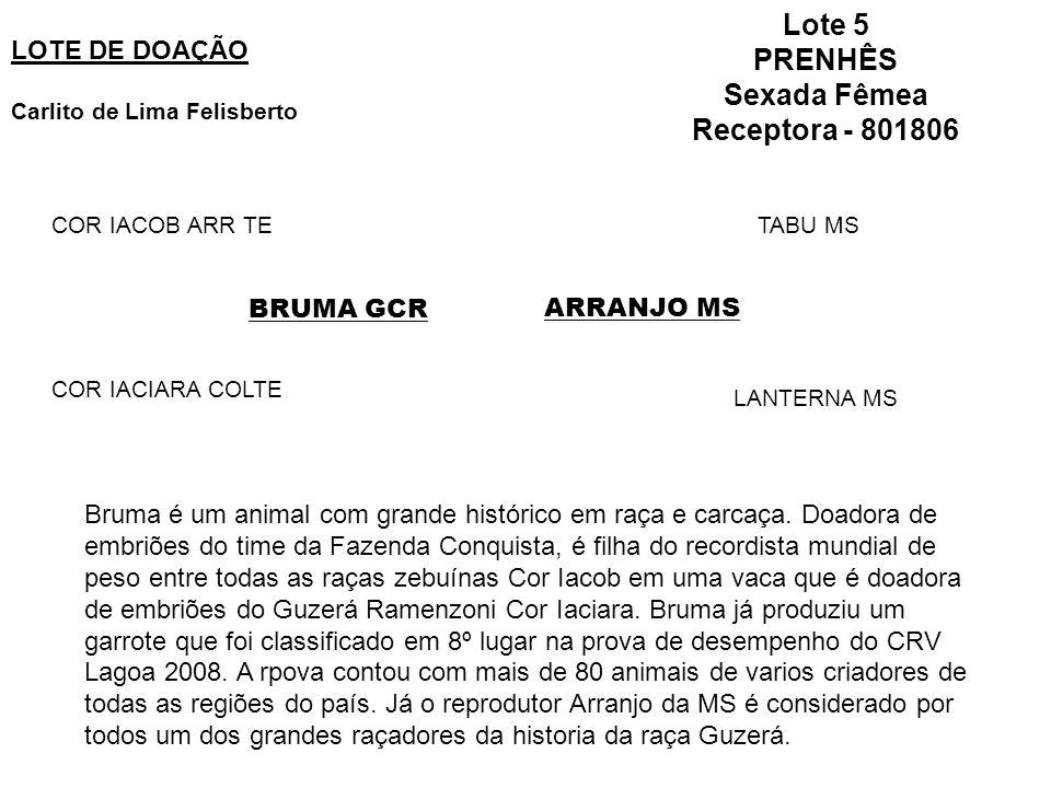 Lote 5 PRENHÊS Sexada Fêmea Receptora - 801806 LOTE DE DOAÇÃO Carlito de Lima Felisberto ARRANJO MSBRUMA GCR COR IACOB ARR TE COR IACIARA COLTE TABU MS LANTERNA MS Bruma é um animal com grande histórico em raça e carcaça.