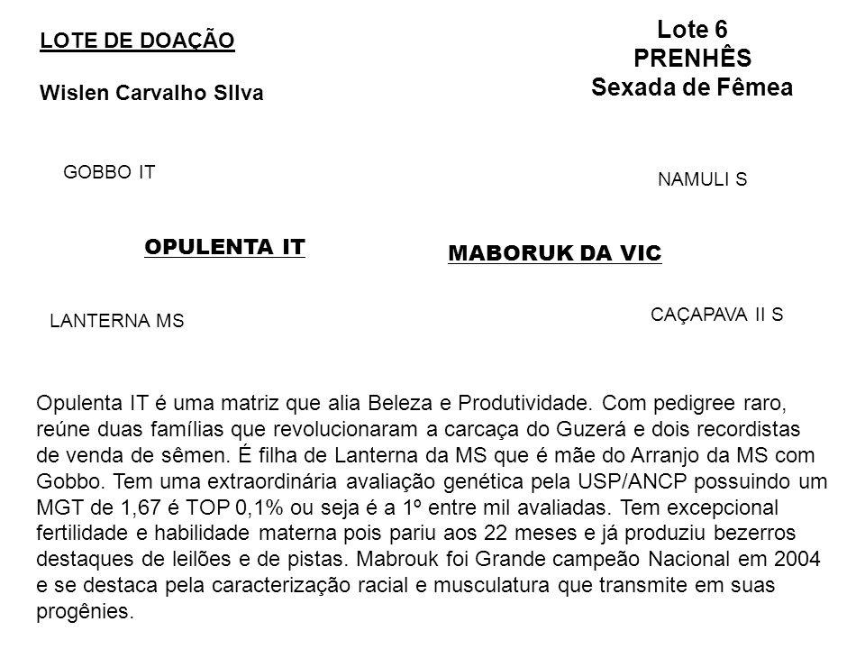 LOTE DE DOAÇÃO Wislen Carvalho SIlva Lote 6 PRENHÊS Sexada de Fêmea OPULENTA IT GOBBO IT LANTERNA MS MABORUK DA VIC NAMULI S CAÇAPAVA II S Opulenta IT é uma matriz que alia Beleza e Produtividade.