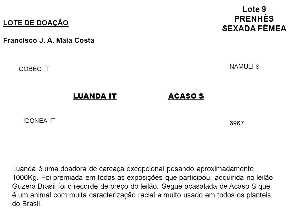 Lote 9 PRENHÊS SEXADA FÊMEA LOTE DE DOAÇÃO Francisco J.