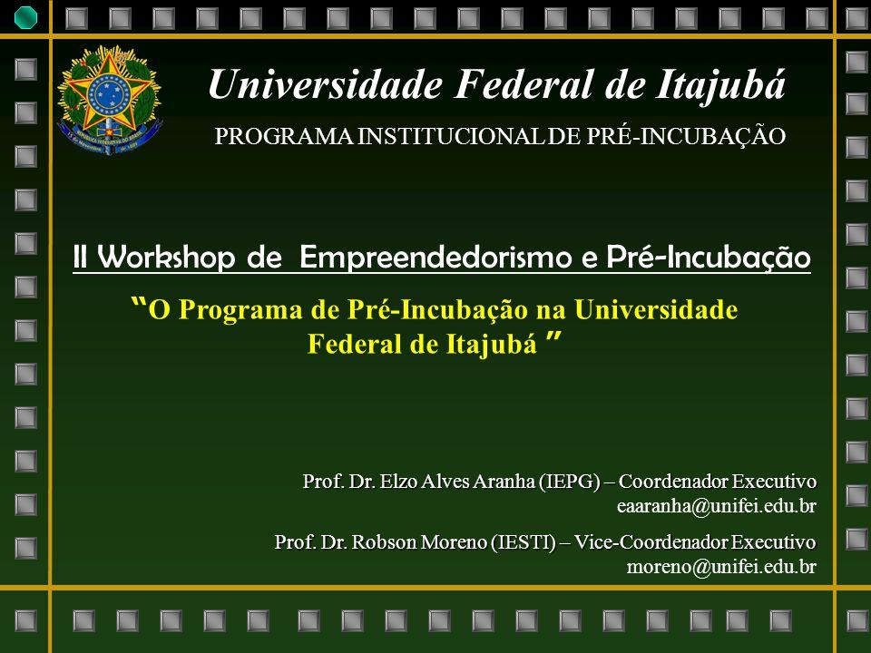 Universidade Federal de Itajubá PROGRAMA INSTITUCIONAL DE PRÉ-INCUBAÇÃO Prof. Dr. Elzo Alves Aranha (IEPG) – Coordenador Executivo eaaranha@unifei.edu