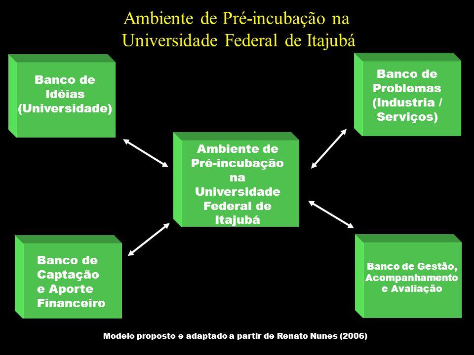 Banco de Idéias (Universidade) Banco de Problemas (Industria / Serviços) Ambiente de Pré-incubação na Universidade Federal de Itajubá Banco de Captaçã