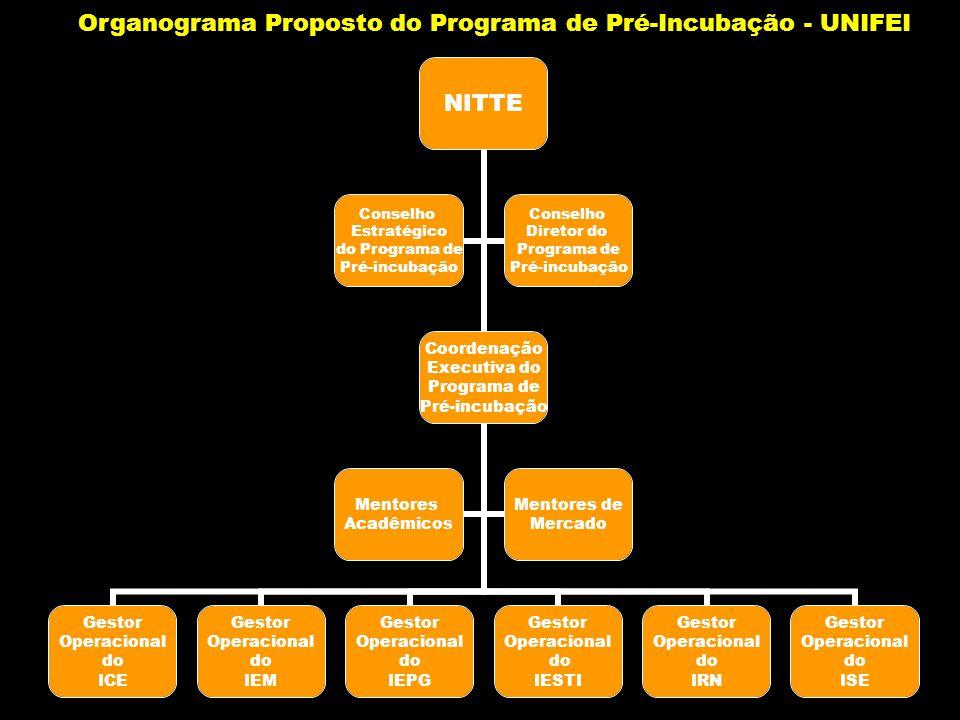 NITTE Coordenação Executiva do Programa de Pré-incubação Gestor Operacional do ICE Gestor Operacional do IEM Gestor Operacional do IEPG Gestor Operaci