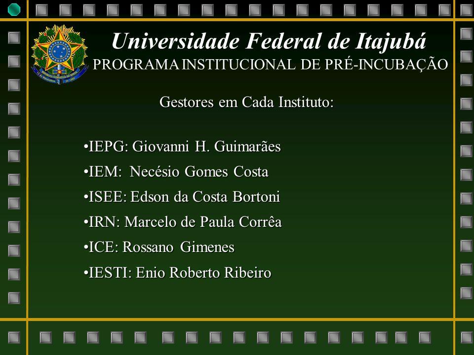 Universidade Federal de Itajubá PROGRAMA INSTITUCIONAL DE PRÉ-INCUBAÇÃO Gestores em Cada Instituto: IEPG: Giovanni H. GuimarãesIEPG: Giovanni H. Guima