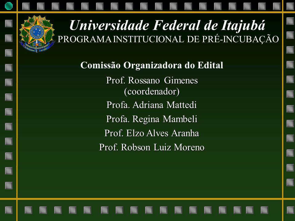 Universidade Federal de Itajubá PROGRAMA INSTITUCIONAL DE PRÉ-INCUBAÇÃO Comissão Organizadora do Edital Prof. Rossano Gimenes (coordenador) Profa. Adr