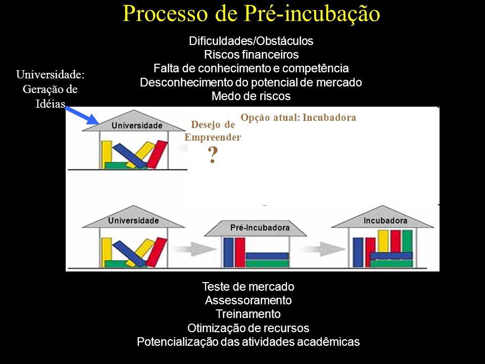 Processo de Pré-incubação Teste de mercado Assessoramento Treinamento Otimização de recursos Potencialização das atividades acadêmicas Dificuldades/Ob