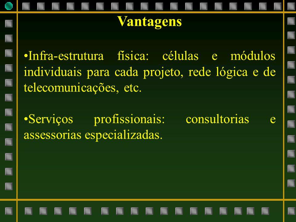 Vantagens Infra-estrutura física: células e módulos individuais para cada projeto, rede lógica e de telecomunicações, etc. Serviços profissionais: con