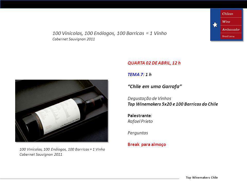 Top Winemakers Chile 100 Vinícolas, 100 Enólogos, 100 Barricas = 1 Vinho Cabernet Sauvignon 2011 QUARTA 02 DE ABRIL, 12 h TEMA 7: 1 h Chile em uma Gar