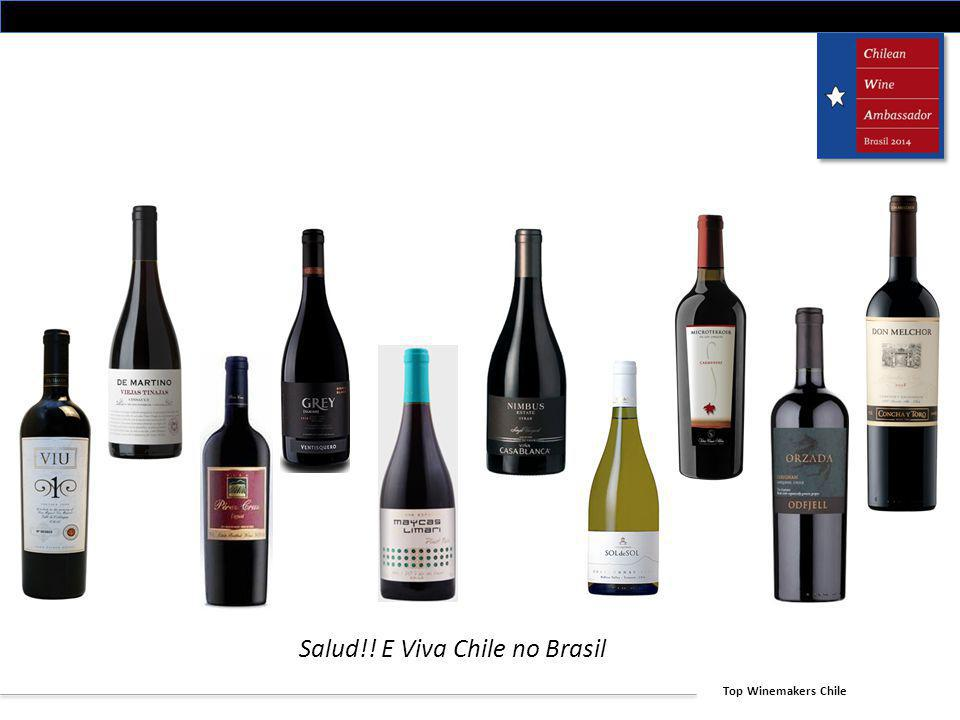 Top Winemakers Chile Salud!! E Viva Chile no Brasil