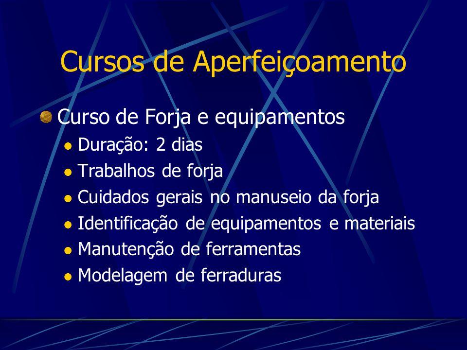 Curso de Forja e equipamentos Duração: 2 dias Trabalhos de forja Cuidados gerais no manuseio da forja Identificação de equipamentos e materiais Manute