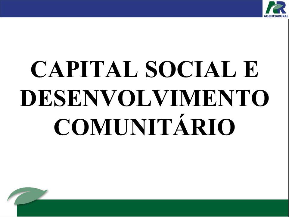 CAPITAL SOCIAL E DESENVOLVIMENTO COMUNITÁRIO