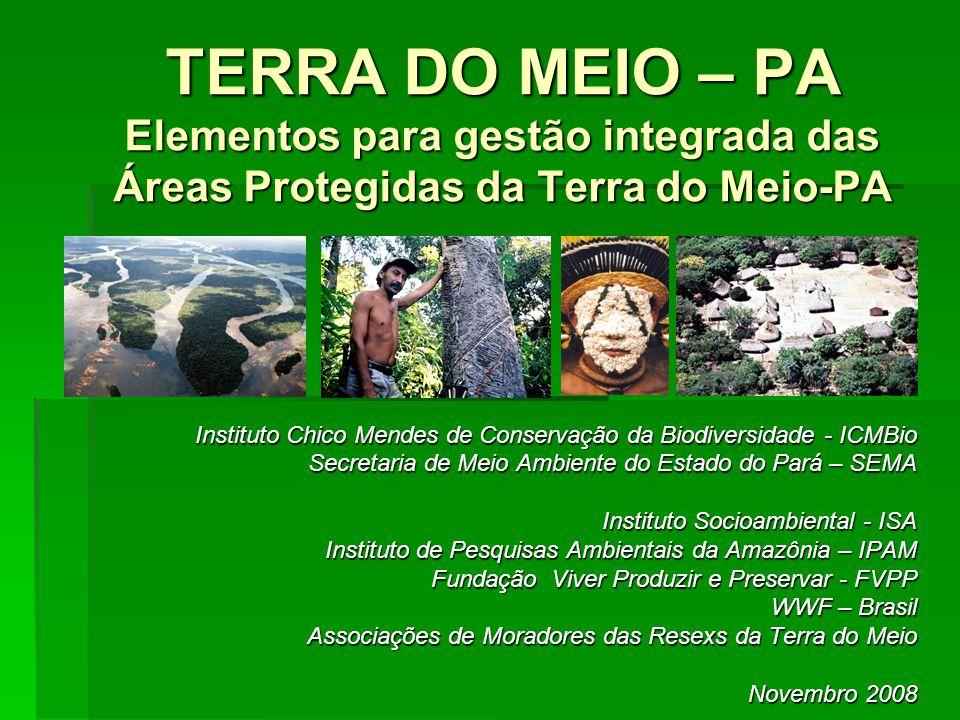 TERRA DO MEIO – PA Elementos para gestão integrada das Áreas Protegidas da Terra do Meio-PA Instituto Chico Mendes de Conservação da Biodiversidade -