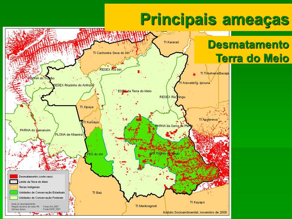 Desmatamento Terra do Meio Principais ameaças