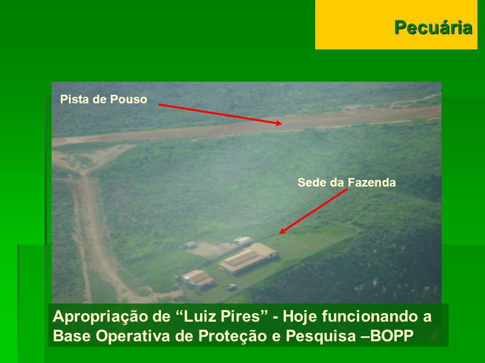 DESINTRUSÃO Apropriação de Luiz Pires - Hoje funcionando a Base Operativa de Proteção e Pesquisa –BOPP Pista de Pouso Sede da FazendaPecuária
