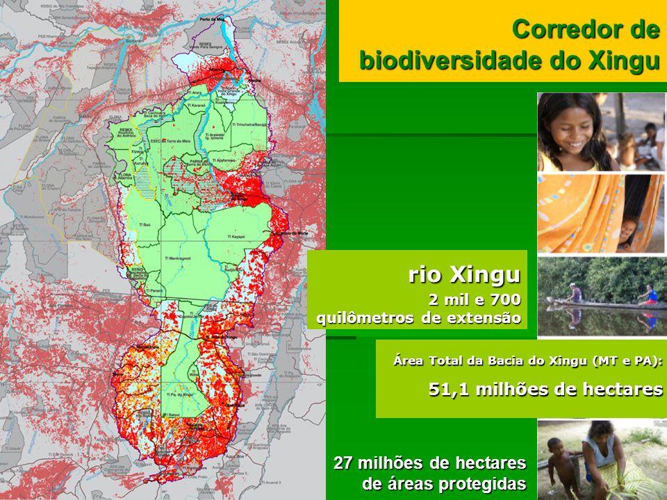 Corredor de biodiversidade do Xingu 27 milhões de hectares de áreas protegidas Área Total da Bacia do Xingu (MT e PA): 51,1 milhões de hectares rio Xi