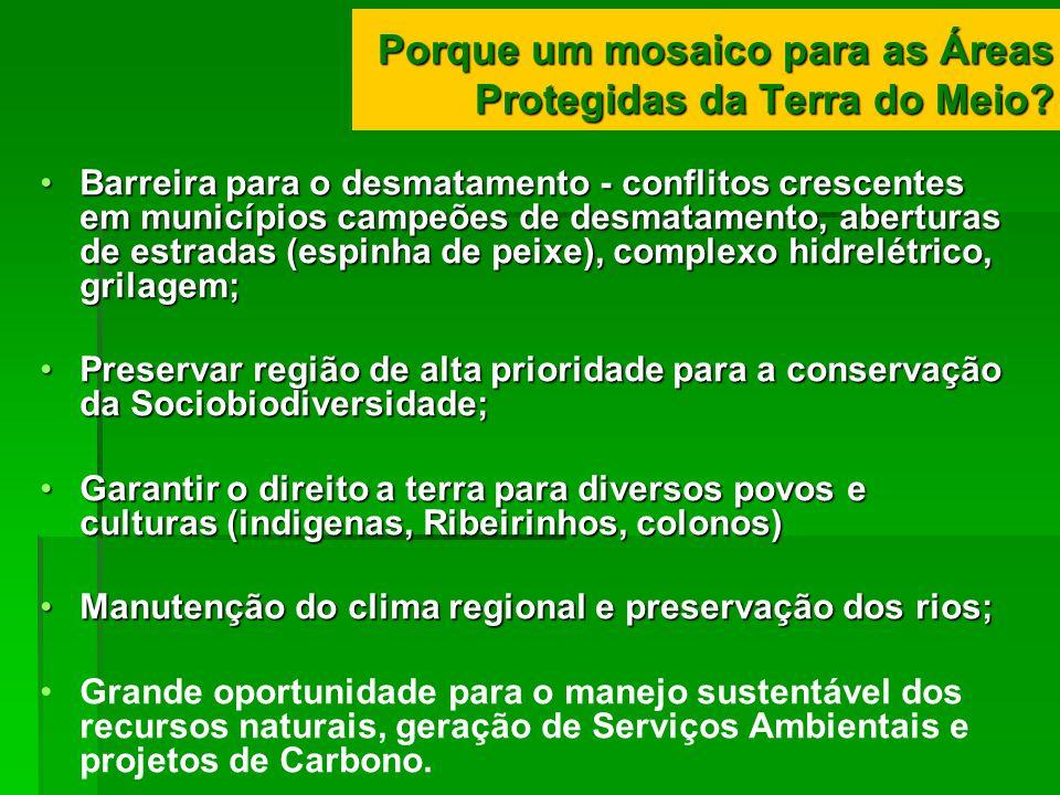 Porque um mosaico para as Áreas Protegidas da Terra do Meio? Barreira para o desmatamento - conflitos crescentes em municípios campeões de desmatament