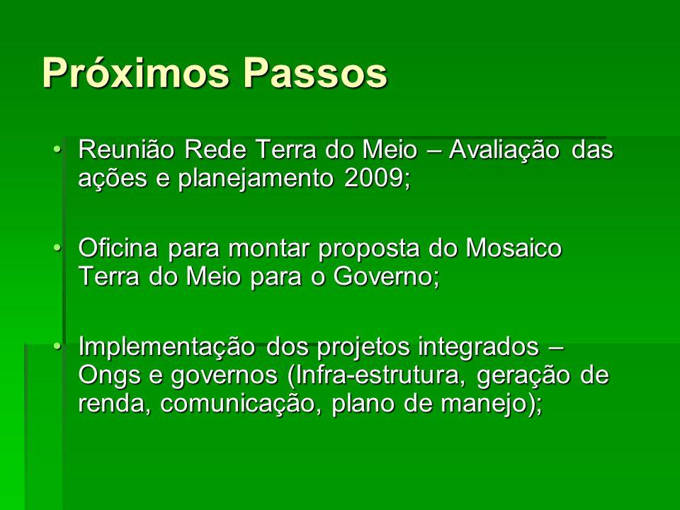 Próximos Passos Reunião Rede Terra do Meio – Avaliação das ações e planejamento 2009;Reunião Rede Terra do Meio – Avaliação das ações e planejamento 2