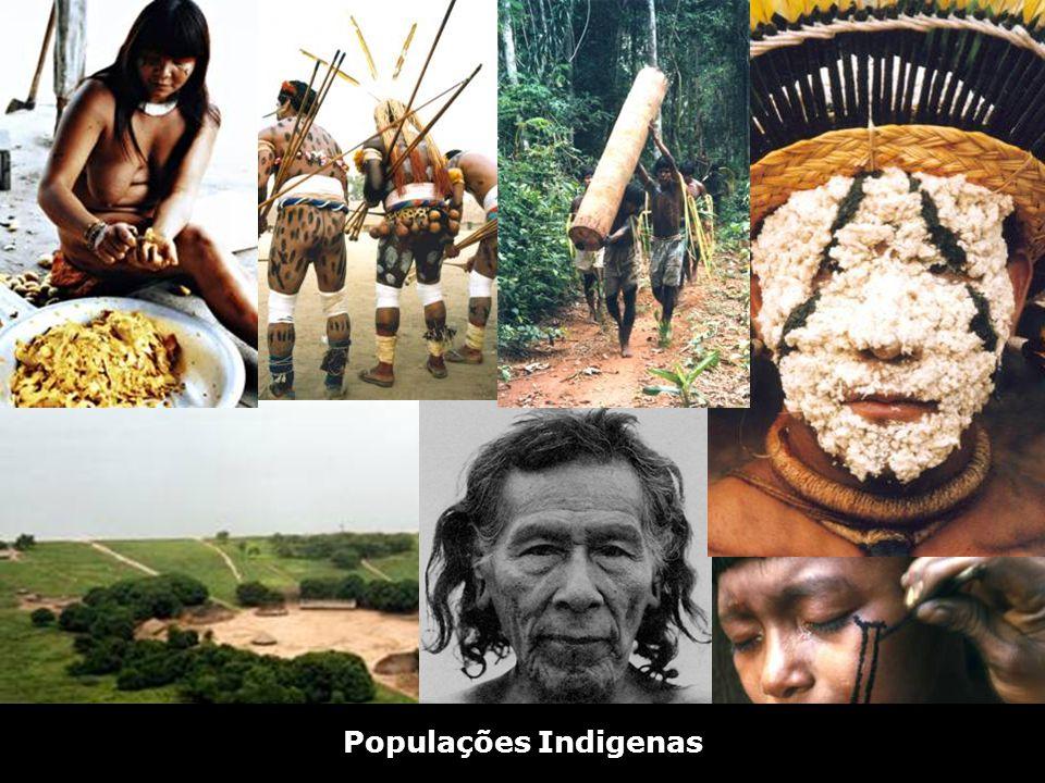 Aldeia Kamayurá Populações Indigenas