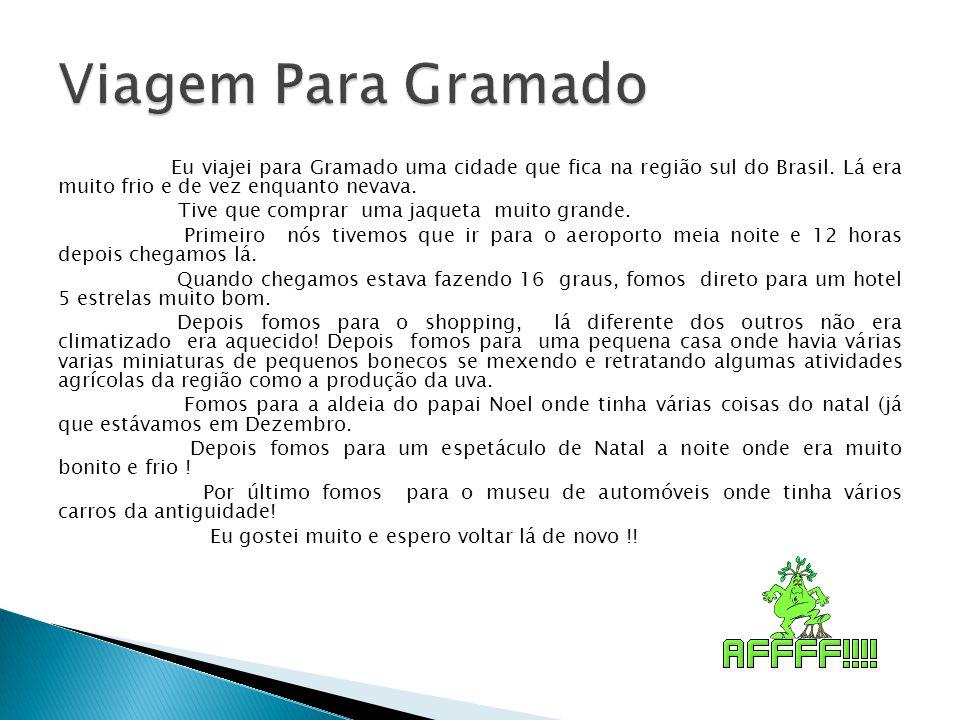 Eu viajei para Gramado uma cidade que fica na região sul do Brasil. Lá era muito frio e de vez enquanto nevava. Tive que comprar uma jaqueta muito gra