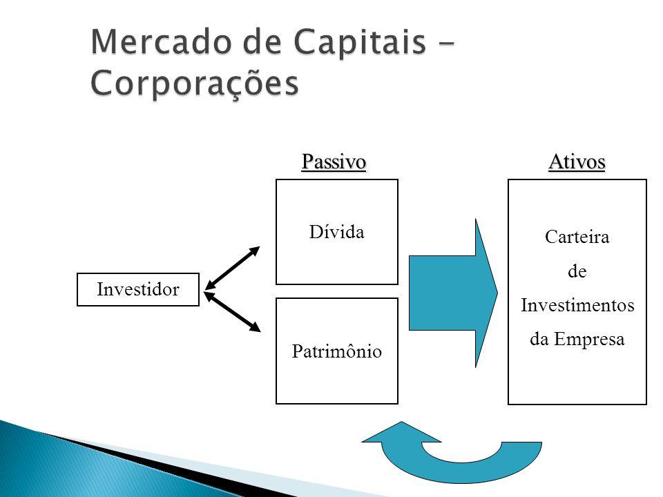 Investidor Dívida Patrimônio Passivo Carteira de Investimentos da Empresa Ativos