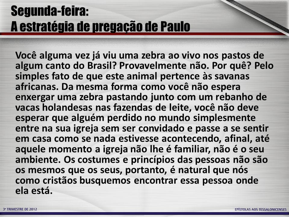 Segunda-feira: A estratégia de pregação de Paulo Você alguma vez já viu uma zebra ao vivo nos pastos de algum canto do Brasil.