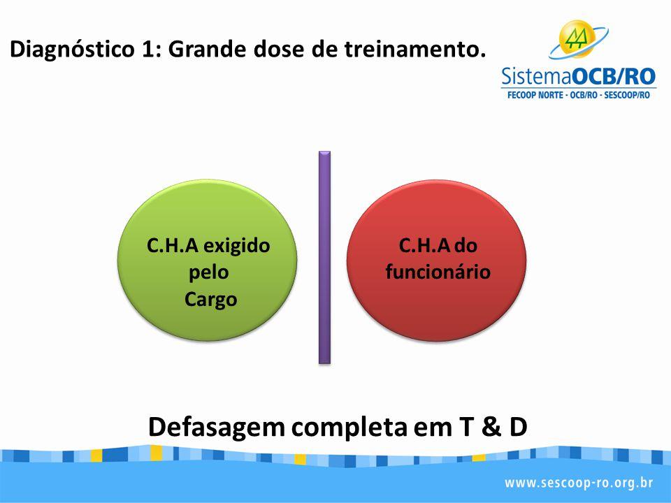 Diagnóstico 1: Grande dose de treinamento. Defasagem completa em T & D C.H.A exigido pelo Cargo C.H.A do funcionário