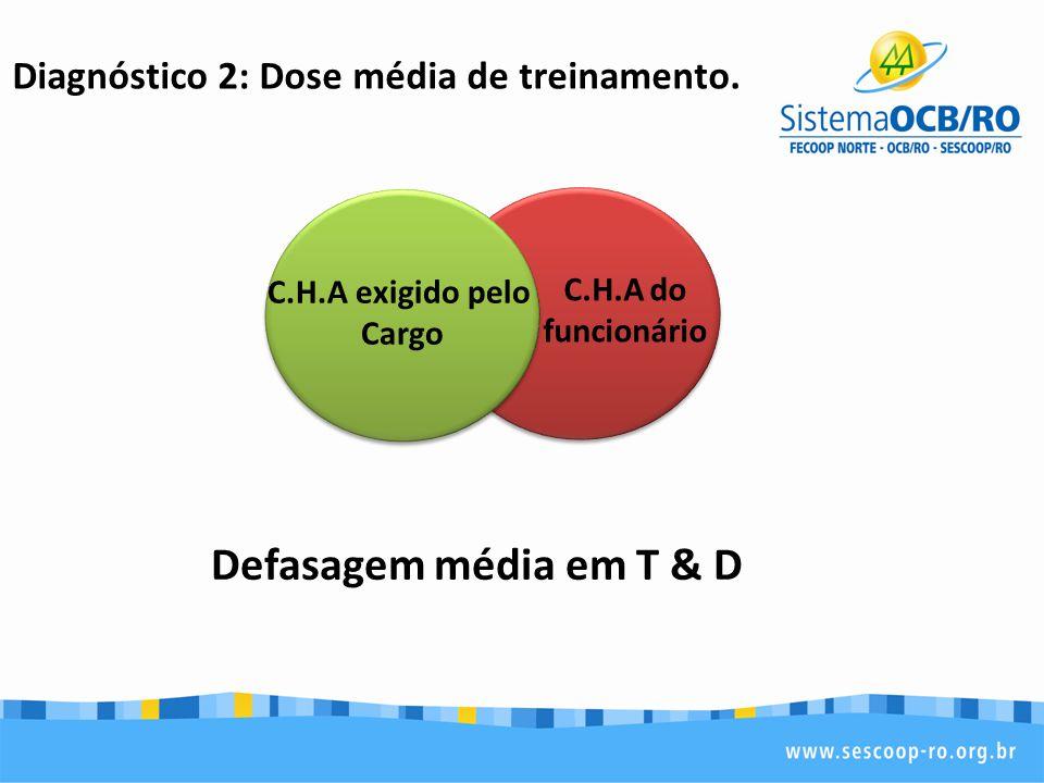 Diagnóstico 2: Dose média de treinamento. Defasagem média em T & D C.H.A do funcionário C.H.A exigido pelo Cargo