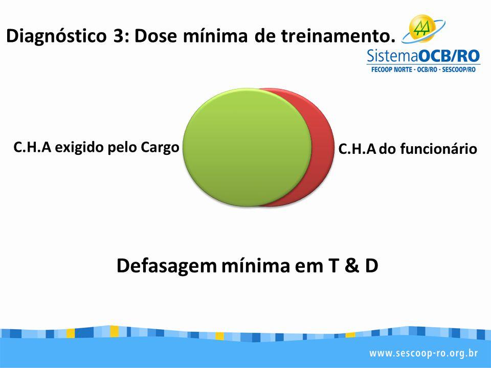 Diagnóstico 3: Dose mínima de treinamento. Defasagem mínima em T & D C.H.A exigido pelo Cargo C.H.A do funcionário