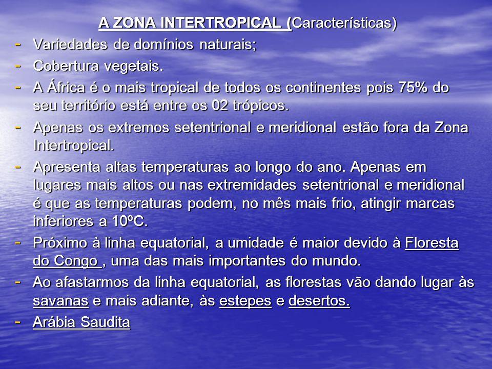 A ZONA INTERTROPICAL (Características) A ZONA INTERTROPICAL (Características) - Variedades de domínios naturais; - Cobertura vegetais. - A África é o
